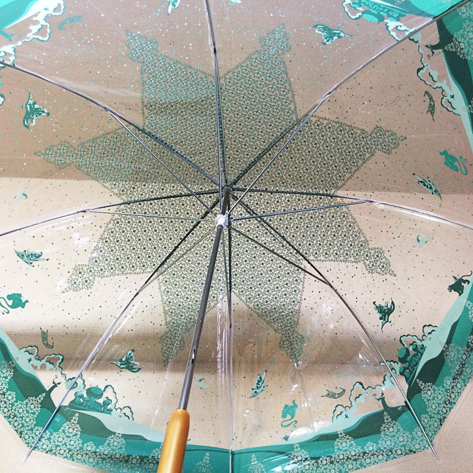 プリンセス傘_アラジン_広げたところ